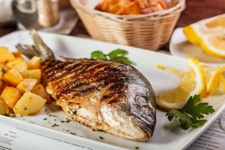 Dorado fish