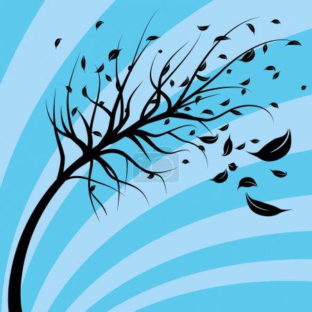 Wind Blown Tree