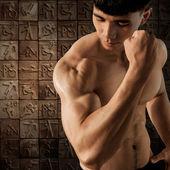 肖像肌肉男