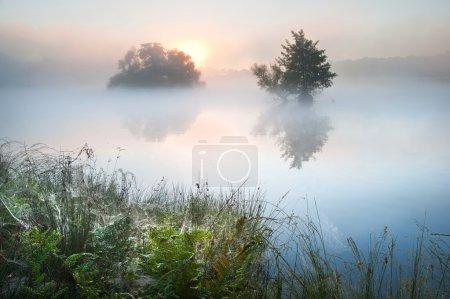 美丽的秋天秋季景观在雾朦胧湖带 glowin