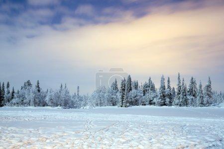 在晚上的冬季风景