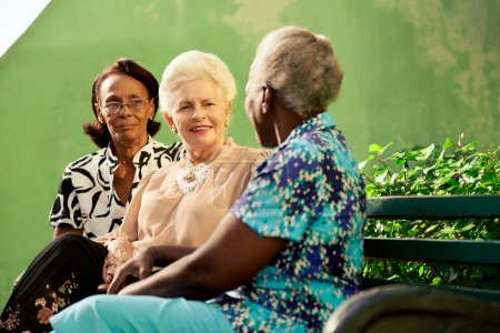 组老人的黑人妇女和白人妇女在公园谈话