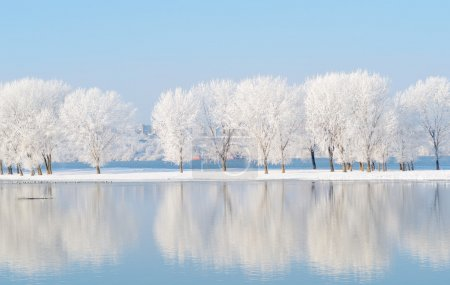 winter landscape with beautiful reflection in the water