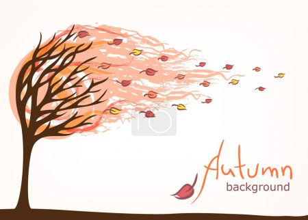 autumn backgrouns with tree
